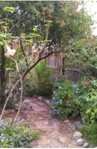 Green Gables Florida Friendly Landscaping July 2019