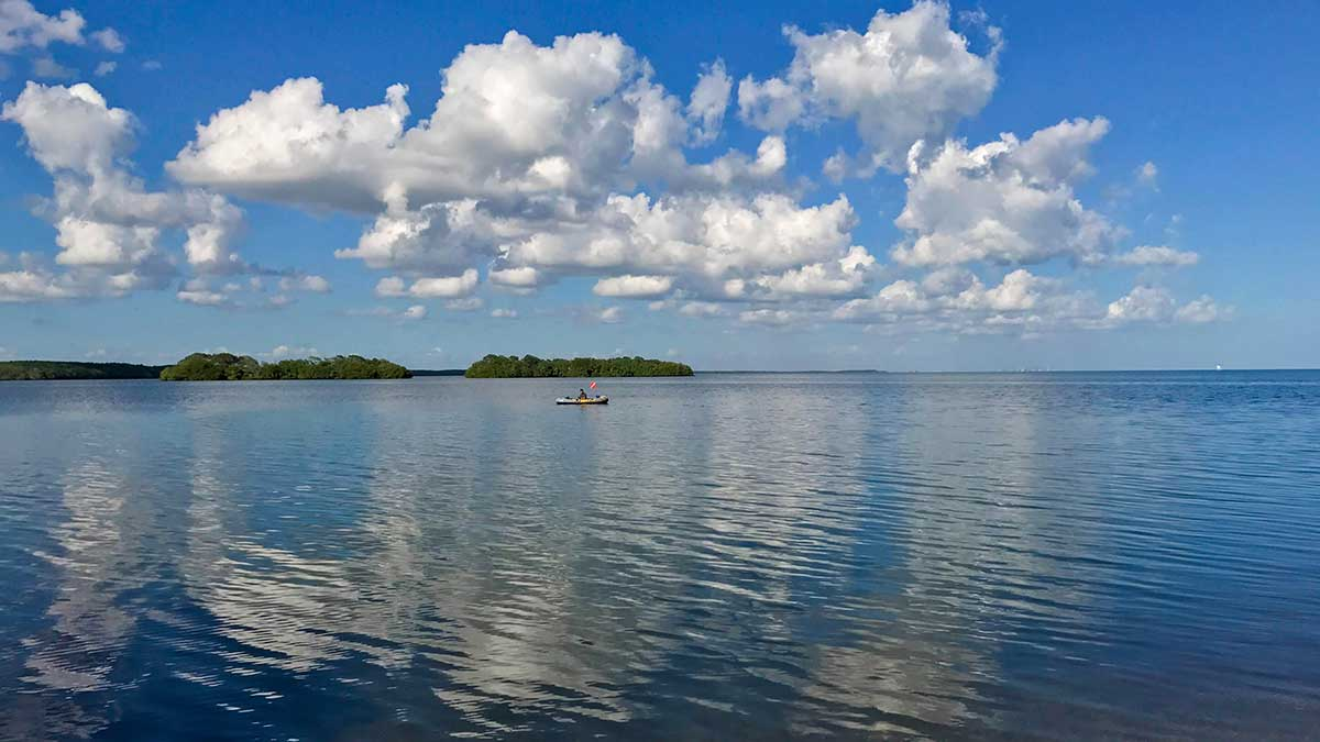 Keeping our Beautiful Bay Beautiful
